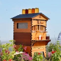 Flow Hive 2 Cedar 7 ramar